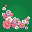 Floral Pattern,Design Element,Chamomile,Ornate,Blossom,Petal,Herb,Greeting Card,Frame,Postcard,Summer,Color Image,Nature,Backgrounds,Placard,Greeting,Garland,Symbol,Shape,Season,Green Color,Wreath,Daisy,Beauty,Vignette,Painted Image,Ilustration,Plant,Vector,Picture Frame,Invitation,Banner,Vibrant Color,Flower,Springtime,Design,Circle,Wallpaper Pattern,White,Decoration,Image,Meadow,Pattern,Computer Graphic