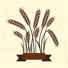 Corn - Crop,Agriculture,Wheat,Frame,Field,Farm,Corn On The Cob,Vector,Crop,Harvesting,Old,Ribbon,Cereal Plant,Grunge,template,Paper,Stem,Business,Banner,Print,Design,Poster,Greeting Card,Nature,Rural Scene,Non-Urban Scene,Food,agronomy,Vegetable,Torn,Award Ribbon,Meal,Rye,Dirty,Backgrounds,flayer,Ilustration,Organic,Plant,Cutting,Postcard,Industry,Ripe,Bakery,Growth,Ornate