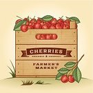 Fruit,Crate,Old-fashioned,Label,Farm,Rubber Stamp,Wood - Material,Sign,Food,1940-1980 Retro-Styled Imagery,Cherry,Crop,Woodcut,Banner,Agriculture,Gardening,Orchard,Ripe,Red,Summer,Green Color,Engraved Image,Vector,Leaf,Ilustration,Farmer's Market,Drawing - Art Product,Freshness,Scratched,Autumn,Eps10,Textured Effect,Nature,Healthy Eating,Season,Plantation,Merchandise,Print,Painted Image,Design,Vegetarian Food,Organic