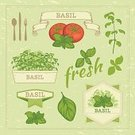 Basil,Retro Revival,Tomato,Vegetable,Old-fashioned,Herb,Herbal Medicine,Botany,Leaf,Commercial Kitchen,Pesto Sauce,Label,Plant,Domestic Kitchen,Vegetable Garden,Food And Drink,Flower Bed,Computer Icon,Potted Plant,Nature,Cooking,Set,Vector,Ilustration,Freshness,Flower Pot,Isolated,Backgrounds,Green Color,Spice,Organic,Food,Design,Formal Garden,Gardening,Ornamental Garden,White,Collection