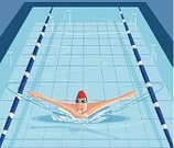 Swimming Pool,Swimming,Water Sport,Breaststroke,Speed,Lifestyles,Summer,Exercising,Jumping,Swimwear,Swimming Goggles,Freshness,People,selectable,Enjoyment,Vector,Ilustration,Activity,Sport,Action