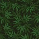 Marijuana Plant,Marijuana,Leaf,Pattern,Backgrounds,Material,Abstract,Herbal Medicine,Wallpaper Pattern,Nature,Textile,Isolated,Textured,Hashish,Design,ganja,Textured Effect,Plant,Herb,Repetition,Weed,Grass,Drawing - Art Product,Silhouette,Addiction,Vector,Seamless,Cartoon,Symbol,Ilustration,Green Color,Narcotic,Floral Pattern
