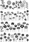 Flower,Single Flower,Vector,Floral Pattern,Silhouette,Springtime,Water Lily,Clover,Dandelion,Plant,Dahlia,Lotus Water Lily,Orchid,Herbal Medicine,Rose - Flower,Herb,Abstract,Flower Bed,Chrysanthemum,Lily,Chamomile Plant,Leaf,Tropical Flower,Growth,Ayurveda,Summer,Hibiscus,Grass,Design Element,Rowanberry,Blossom,Natural Pattern,Botany,Beauty In Nature,Nature,Bluebell,Season,Collection,Meadow