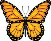 Monarch Butterfly,Butterfly - Insect,Single Object,Freedom,Flying,Moth,Large,Small,Tropical Climate,Fragility,Colors,Ilustration,Beautiful,Vector,Beauty In Nature,Macro,Looking At View,Biology,Close-up,Isolated,Arthropod,Symbol,Black Color,Backgrounds,Multi Colored,Summer,Orange Color,Animal Antenna,Yellow,Nature,Animal,Wing,Vibrant Color,Insect,Pattern
