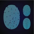 Fingerprint,Digitally Generated Image,Human Finger,Thumb,Symbol,Pattern,Intellectual Property,Identity,Science,Thumbprint,Security,Signature,Human Hand,Accessibility,Police Force,Authority,Detective,Sign,Data,Secrecy,Exploration,Computer Key,People,Password,Safety,Imitation,Criminal,Track,Protection,Individuality,fingermark,Biometrics