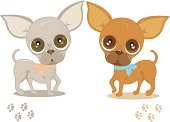 Chihuahua,Dog,Cartoon,Paw Print,Animated Cartoon,Puppy,Vector,Animal,Small,Cute,Track,Footprint,Paw,Pets,Bizarre,Animal Track,Purebred Dog,Friendship,Looking,Characters,Baby Animals,Young Animal,Dogs,Illustrations And Vector Art,Animals And Pets,Staring