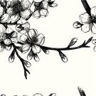 Single Flower,Flower,Ink,Formal Garden,Bud,Growth,Nature,Engraving,Blossoming,Floral Pattern,Plant,Blooming,Backgrounds,Blowing,Black Color,Pencil Drawing,Season,Fragility,Pattern,Natural Pattern,Twig,Invitation,Drawing - Activity,Vector,Springtime,White,Affectionate,Leaf,Drawing - Art Product,Computer Graphic,Bark,April,Shape,Ilustration,Flower Head,Engraved Image,Branch,Flourish,Old-fashioned,Foliate Pattern