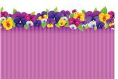 Flower,Pink Color,Purple,Single Flower,Springtime,Petal,Violet,Frame,Viola - Musical Instrument,Floral Pattern,Plant,Nature,Valentine Card,Season,Wild Pansy,Leaf,Flower Head,Orange Color,Blossom,Backgrounds,Beauty In Nature,Valentine's Day - Holiday,Mothers Day,Summer,Pansy,Red,Blue,Yellow,Striped,Greeting Card