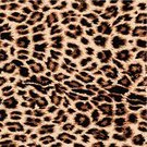 Leopard Print,Jaguar,Pattern,Animal,Animal Skin,Backgrounds,Fur,Textured Effect,Leopard,Seamless,Print,Camouflage,Textile,Orange Color,Spotted,Decoration,Tropical Climate,Animal Hair,Ilustration,Undomesticated Cat,Vector,Clip Art,Candid,Wildlife,Camouflage Clothing,Continuity,Nature,Animals In The Wild,Ornate,Repetition,Intricacy,Abstract,Brown,Artificial,Black Color