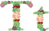 Letter T,Clip Art,Nature,Digital Composite,festoon,Decoration,Multi Colored,Summer,Affectionate,Flower Head,Computer Graphic,Vector,Beauty In Nature,Bundle,Curve,Cut Flowers,Bouquet,Elegance,Ilustration,Vibrant Color,Formal Garden,Gardening,Letter,Succulent Plant,Design Element,Abstract,Pink Color,Springtime,Alphabet,Heart Shape,Digitally Generated Image,Shape,Cute,Romance,Freshness,Single Flower,Flower,Floral Pattern