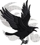 Raven,Crow,Feather,Decoration,Pattern,Tracery,Drawing - Activity,Computer Graphic,Black Color,Halloween,Old-fashioned,Vector,Bird,Ilustration,Backgrounds