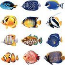Tropical Fish,Tropical Fresh Water Fish,Colors,White Background,Saltwater Fish,Underwater,Sea,Sea Life,Sea Life Centre,Fish,Tropical Climate,aquarium fish,Symbol,Icon Set,Beauty In Nature,School of Fish,Blue,Isolated On White,Vector,Ilustration,Cartoon,Clown Fish,Group Of Animals,Multi Colored,Animal Themes,Sparse,Animal,Swimming Animal