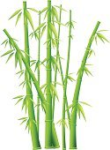 Bamboo,Bamboo,Spa Treatment,Health Spa,Tropical Climate,Vector,Zen-like,Backgrounds,Tree,Leaf,Plant,Silhouette,Art,Japan,Symbol,Healthcare And Medicine,Forest,Green Color,Chinese Culture,Non-Urban Scene,Growth,Feng Shui,Healthy Lifestyle,Biology,Bud,Vegetable,Abstract,Grass,Asia,East,Ornamental Garden,Life,Nature,Design,Branch,Beauty,New,Exoticism,Relaxation,Freshness,Isolated,Decoration,Painted Image,Sky,Summer,Tranquil Scene,Aspirations,Sunlight,Climate,Vitality,Beauty In Nature,Nature,Isolated Objects,Isolated-Background Objects