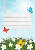 White,Wood - Material,Backgrounds,Summer,Springtime,Vector,Poster,Plank,Grass,Sky,Vibrant Color,Butterfly - Insect,Placard,Sunlight,Meadow,Design,Sun,Sunny,Flower,Bright,Season,Nature,Copy Space,Green Color,Panel,Banner