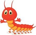 Centipede,Mascot,Vector,Invertebrate,Ilustration,Posing,Presentation,Humor,Insect,Shoe,Caterpillar,Cheerful,Cartoon,Characters,Millipede,Animal Leg,Looking At Camera,Animals In The Wild,Animal,Waving,Happiness,Claw,Smiling,Waving,Walking,Showing,Cute