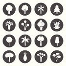 Computer Icon,Symbol,Internet,Fir Tree,Christmas,Silhouette,Season,Botany,Wood - Material,Growth,Computer Graphic,Pollution,Style,Springtime,Isolated,Formal Garden,Collection,Bush,Nature,Organic,Leaf,Concepts,Pine,Set,Ilustration,Backgrounds,Ornate,Part Of,Design,Abstract,Branch,Summer,Tree,Vector,Forest,Green Color,Environment,Recycling,Ideas,Plant