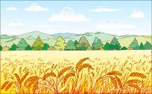 Wheat,Oat,Field,Barn,Barley,Ilustration,Forest,Autumn,Vector,Hill,Green Color,oaten,Yellow,Granary,Measles,Tree,Summer,Sky,Ash,Cloud - Sky,Blue,Illustrations And Vector Art,Cloudscape,Otoscope,Nature
