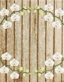 Circle,Flower,Grunge,photorealism,Photo-Realism,Wood - Material,render,Plank,Frame,Vignette,Textured Effect,Dark,Digitally Generated Image,Ilustration,Orchid,Textured,Backgrounds,Picture Frame,Moth Orchid,Factory,gradient mesh,Vector,White,Computer Graphic