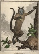 Food,Arts And Entertainment,People,Time,Visual Art,Concepts And Ideas,Animal,Color Image,Vertical,Fruit,Primate