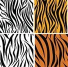 Tiger Print,Pattern,Animal Skin,Zebra Print,Seamless,Camouflage,Effortless,Black And White,Tiger Skin,Safari,Animals In The Wild,Backdrop,Nature,Africa,Savannah,Striped,Curve,At The Edge Of,Animal,Zoo,Computer Graphic,Wildlife,Zebra,Decoration,Tropical Rainforest,Design,Safari Animals,Black Color,Backgrounds,Animal Print