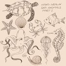 Octopus,Octopus,Turtle,Old-fashioned,Drawing - Art Product,Retro Revival,Set,Sea,Sketch,Animal Shell,Vector,Sea Horse,Horse,Jellyfish,Drawing - Activity,Ilustration,hand drawn,Collection,Summer,Brown,Snail,Symbol,Beige,Exoticism,Wildlife,Fish,Aquarium,Isolated,Life,Seashell,Outline,Animal,Water,Underwater,1940-1980 Retro-Styled Imagery,Backgrounds,Computer Icon,Design,Crab,Starfish,Cute,Nature,Silhouette,Tropical Climate,Contour Drawing