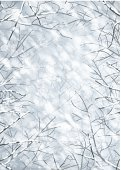 Cold - Termperature,Weather,Beauty In Nature,Blue,Christmas,Backgrounds,Branch,Season,Vector,Winter,Blizzard,Snowing,Decoration,Backdrop,Forest,Snow,Outdoors,Snowflake,Tree,Woodland,No People,Nature,Frame,Frost,Ilustration,Image,Eps10