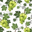 Vineyard,Winemaking,Fruit,Vine,Backgrounds,Curled Up,Curve,Continuity,Berry Fruit,Tendril,Branch,Bunch,Season,Ripe,Crop,Green Color,Nature,Repetition,Vector,Backdrop,Swirl,Leaf,Dessert,Pattern,Design,Design Element,Floral Pattern,Grape,Food,Ornate,Decoration,Ilustration,Freshness,Plant,Seamless,Sweet Food,Textured,Agriculture