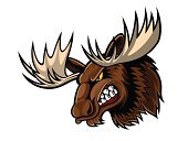 Moose,Cartoon,Animal Head,Anger,Mountain,Stag,Elk,Mascot,Alaska,Brown,Deer,Endangered Species,Computer Graphic,Animal Nose,Tattoo,Animals In The Wild,Horned,Ilustration,Indigenous Culture,Large,Isolated,Animal,Nature,Wilderness Area,Zoo,Antler,Mammal,Hunting,Vector,White,Wildlife,Canada,Forest,Vertebrate,Design,Art Product,Fur,Black Color,Power