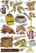 Cacao Fruit,Symbol,Drinking,Collection,Commercial Sign,Caramel,Holding,Plant,Sugar,Incomplete,Clip,Seasoning,Wood - Material,Cafe,Grinder,Coffee - Drink,Scented,Hazelnut,Milk,Vector,Ilustration,Vanilla,Cinnamon,Bean,Pushing,Drawing - Activity,French Culture,Art,Set,Flower,Drink,Pointing,Scratchboard,Kettle,Drawing - Art Product,Chocolate,Restaurant,Spoon,Color Image,Men,Sack,Human Hand,Cup