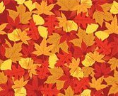 Autumn,Leaf,Falling,Pattern,Backgrounds,Seamless,Tree,Maple,foliagé,Oak,Ginkgo,Canadian Culture,Symbol,Vector,Red,Sweet Gum Tree,Sycamore Tree,Season,Silhouette,Computer Icon,Environment,Nature,seamless pattern,Orange Color,Black Color,Color Gradient,November,September,Candid,Ilustration,Oak Tree,Set,Plant,Colors,Multi Colored,Design Element,Yellow,Lush Foliage,Color Image,Nature,Plants,Illustrations And Vector Art,Bush,Fall,Collection,October