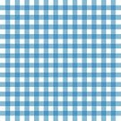 Checked,Wallpaper Pattern,Pattern,Cultures,Tablecloth,Simplicity,Blue,Curtain,Picnic,Backgrounds,Breakfast,Blanket,Abstract,Plaid,Flat,Decoration,Ilustration,Vector,Old,Fashion,Style,Cotton,Concepts,Design,White,Textile,Textured,Table