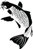 Fish,Carp,Shy,Indigenous Culture,Chinese Ethnicity,Vector,Japan,Tattoo,Koi Carp,Japanese Ethnicity,Black Color,Ornate,Beautiful,Asia,Symbol,Drawing - Art Product,Zen-like,Isolated,White,Ilustration,Computer Graphic,Exoticism,Elegance