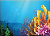 Sea,Below,Coral,Underwater,River,Image,Reef,Nature,Wealth,Gift,Surrounding,Fossil,Condensation,Outdoors,Leaf,Sunbeam,Computer Graphic,Hell,Long,Awe,Vector,Multi Colored,Blue,Lake,Pond,Deep,Day