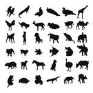 Silhouette,Animal,Dog,Farm,Domestic Cat,Black Color,Ilustration,Horse,Elephant,Mammal,Wildlife,Bird,Cute,Giraffe,Eps10,Reptile,Drawing - Activity,Cow,Zoo,Ostrich,Deer,Sketch,Africa,Vector,Animals In The Wild,Collection,Nature,Set