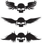 Artificial Wing,Wing,Silhouette,Feather,Vector,Evil,Death,Icon Set,Ilustration,Feather,Human Bone,Black Color,Horror,Art,Ideas,Insignia,Ink,Design,Concepts,Flying,Cheap,Cruel,Spooky,Objects with Clipping Paths,graphic elements,Back Lit,Concepts And Ideas,Isolated Objects