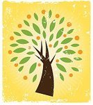 Tree,Citrus Fruit,Orange - Fruit,Fruit,Orange Color,Grunge,Symbol,Growth,Green Color,Life,Old-fashioned,Leaf,Tree Trunk,Religious Icon,Cultivated,Gold Colored,Distressed,Brown,Lush Foliage,Star Burst,Yellow,Concepts And Ideas,Illustrations And Vector Art,Arts And Entertainment,Arts Backgrounds