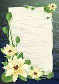 Lotus Water Lily,Water Lily,Lily,Pond,Vector,Water,Flower,Asia,Petal,Leaf,Lake,Symbol,Ilustration,Non-Urban Scene,Nature,Scenics,East,Backgrounds,Plant,Decoration,Rippled,Summer,Painted Image,Stem,Botany,Flower Head,Tranquil Scene,Nature,Ornate,Nature Backgrounds,Flowers,Beauty In Nature
