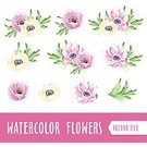 you,Multi Colored,Flower Head,Ilustration,Red,Collection,Pink Color,Purple,Leaf,Vector