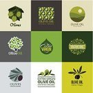 Olive Tree,Olive,Cooking Oil,Organic,Sign,Label,Vegetable,Computer Icon,Vegetarian Food,Typescript,Symbol,Agriculture,Ornate,Branch,Leaf,Food,Yellow,Tree,Retro Revival,Nature,Design Element,Design,Plant,Green Color,Ingredient,Ripe,Fruit,Freshness,Close-up,Vector,Set,Packaging,template,Insignia,Merchandise,Healthy Eating,Copy Space,Identity,Ilustration