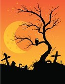 Tree,Halloween,Owl,Spooky,Cemetery,Bare Tree,Horror,Root,Tombstone,Bird,Branch,Grave,Moon,Human Eye,Night,Twilight,Orange Color,Grass,Barren,Midnight,12 O'Clock,Meteor Crater,Dusk,Architecture And Buildings,Shock,Holidays And Celebrations,Halloween