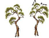 Animal,Nature,sumie,Ink and Brush,Bird,Magpie,Color Image,Pine Tree,pine needles,Meat Pie,Art Product