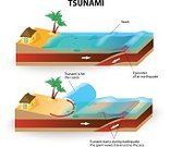 Tectonic,Plate,Tsunami,Natural Disaster,Vector,Water,Plan,Flood,Disaster,Dirt,Sea,Isometric,Earthquake,Wave,Damaged,House,Diagram,Nature,Separation,Sand,Geology,Education,Science,Erupting,Environment,fatalities,inundation,Pastry Crust,Trench,Extreme Terrain,Beach,Coastline,Danger,Cross Section