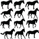 Horse,Silhouette,Animal Head,Rearing Up,Speed,Animal,Symbol,Set,Animals In The Wild,Stallion,Black Color,Mare,Action,Isolated,Mane,Insignia,Vector,Farm,Clip Art,Beauty In Nature,Thoroughbred Horse,Standing,Ilustration,Mammal,Elegance,Shape,Mustang