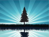 Pine Tree,Tree,Pine,Silhouette,Fir Tree,Vector,Ilustration,Abstract,Landscape,Nature,Reflection,Backgrounds,Grass,Summer,Focus On Background,Sky,Backdrop,Nature Abstract,Vector Florals,Nature Backgrounds,Season,Illustrations And Vector Art,Nature