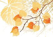 Autumn,Leaf,Tree,Leaf Vein,Pattern,Dirty,Textured,Backgrounds,Vector,Computer Graphic,Halftone Pattern,Aging Process,Sketch,Spotted,Cracked,Old,Wilted Plant,Sycamore Tree,botanic,Maple Tree,Rough,Variation,Season,Colors,Antiquities,Red,Orange Color,Rotting,Ilustration,Plant,Contrasts,Grass Area,Damaged,Brown,Vector Backgrounds,Yellow,Deformed,Obsolete,Nature,Illustrations And Vector Art,Color Image,Wrinkled,Fall