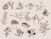 Vegetable,Retro Revival,Old-fashioned,Gardening,Rubber Boot,Seedling,Vegetable Garden,Wheelbarrow,Set,Flower Bed,Symbol,Agriculture,Berry Fruit,Fruit,Sunflower,Sketch,Painted Image,Flower,Farm,Homemade,Crop,Image,Decoration,Design Element,Design,Vector,Backgrounds,Bucket,Drawing - Art Product,Horse Cart,Shoe,Currant,Cucumber,Collection,Isolated,Personal Accessory,Cabbage,Cherry,Watering,Single Object,Sign,Doodle,Computer Graphic,Watering Can,Plant,Outline,Raspberry,Ilustration,Single Flower