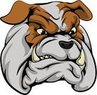 Bulldog,Dog,Cartoon,Sign,Animated Cartoon,White,Snarling,Cruel,Animal Themes,Sports Team,Canine,Strength,Aggression,Sport,Black Color,Bull - Animal,Pets,Isolated,Displeased,Animal Head,English Culture,Protection,Anthropomorphic Face,Vector,Monster,Animal,Team,Tattoo,Domestic Animals,Power,Characters,Furious,Anger,Cheap,Image,Mascot,UK,British Culture,England,Animal Teeth,Clip Art,Symbol,Ilustration