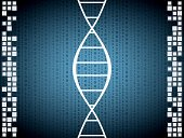 DNA,Healthcare And Medicine,Data,Chromosome,Spiral,Molecular Structure,Helix Model,Genetic Research,Digital Display,Science,Helix,Binary Code,Medical Research,Coding,Biochemistry,Biology,Biotechnology,Nature,Technology,Small