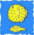 Puffer Fish,Fish,Cartoon,Inhaling,Animation,Inflating,Sea,Blowing,Change,Life,Exhaling,overstate,Large,Fluffy,Sea Life,Aggression,Protection,Vector,Growth,Horror,Deflated,Spooky,No People,Ilustration,Caricature,Animals And Pets,Yellow,Stunt,Fear,Changing Form,Sea Life,Characters,Humor,Surprise,Morphing