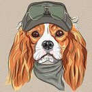 Animal,Dog,Cartoon,Puppy,Serious,Cute,Animal Ear,Long Hair,Domestic Animals,Eyeglasses,Fun,Ilustration,Colors,Shaggy,Purebred Dog,Friendship,Gray Hair,Red,Curve,Green Color,Humor,Black Color,Neckerchief,Orange Color,Vector,Sketch,White,Cap,Funky,Pets,Animal Hair,Hipster,Spaniel,Fashion,Cavalier King Charles Spaniel,Cheerful